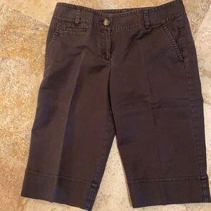 Ann Taylor signature Fit  size 8 shorts